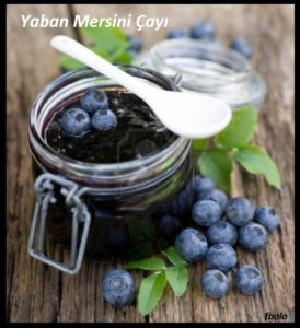 14509188-blueberry-jam_rzp1kvzq