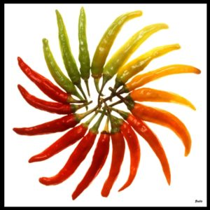 charleston_hot_peppers_white_background-1024x1024