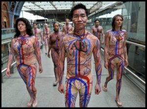 circulatory-system-body-art